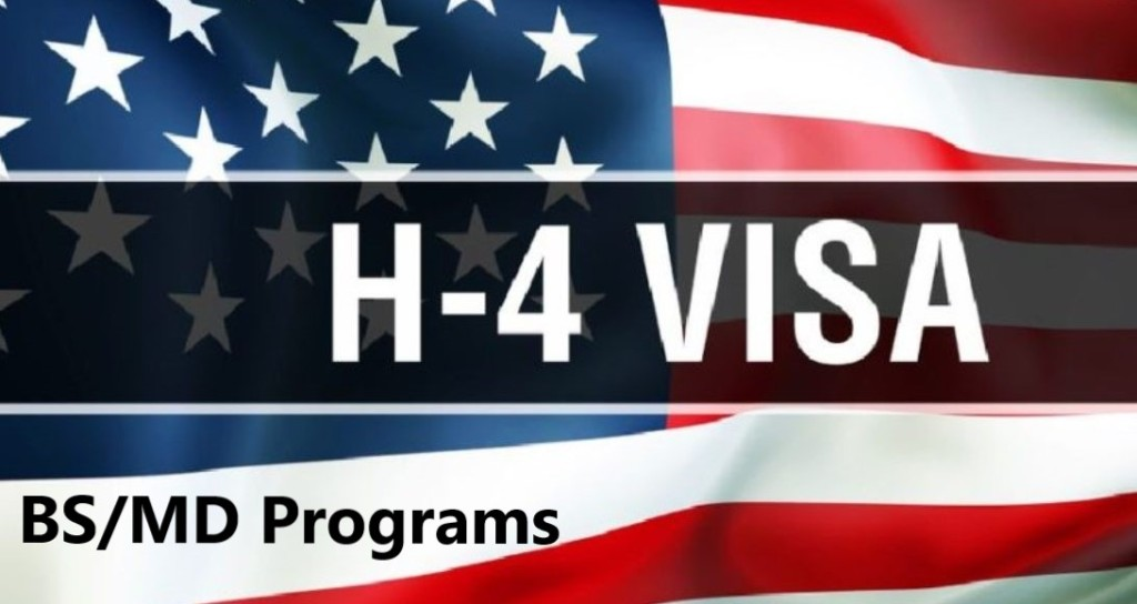 BS_MD_Admissions_H4-Visa_Dr_Paul_Lowe_Admissions_Advisors_IEC_Independent_Educational_Consultants
